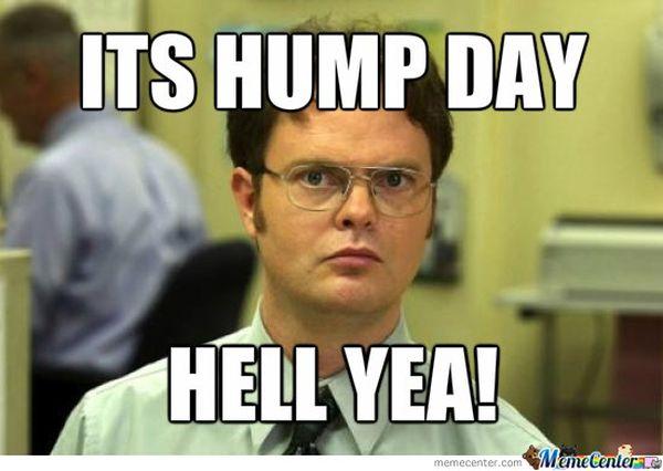 Funniest-hump-day-memes-pics-jokes