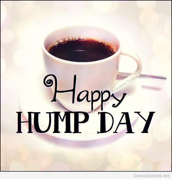 Funny-free-happy-hump-day-images-joke-meme