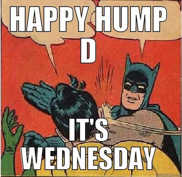 Hilarious-wednesday-hump-day-meme-picture
