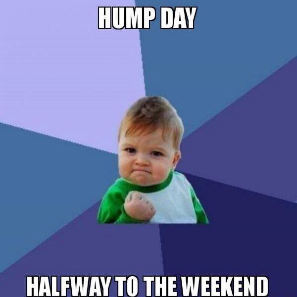Most-hilarious-hump-day-memes-graphic
