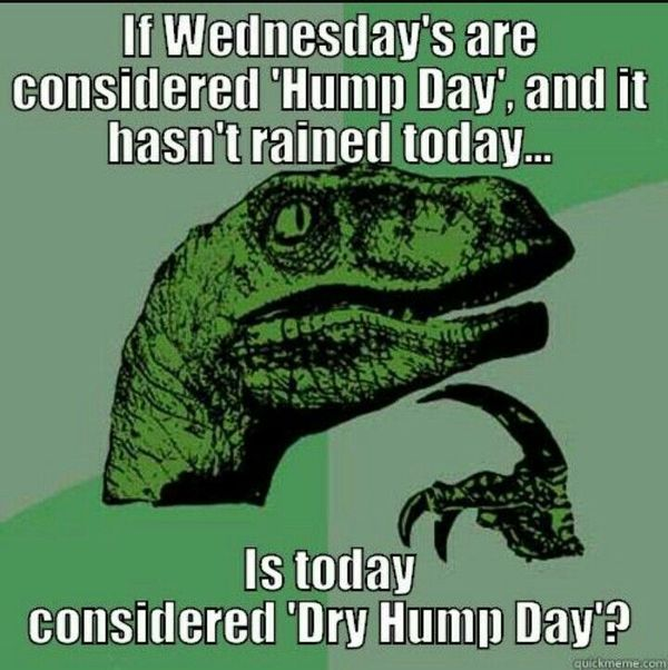 Very-funny-hump-day-memes-joke