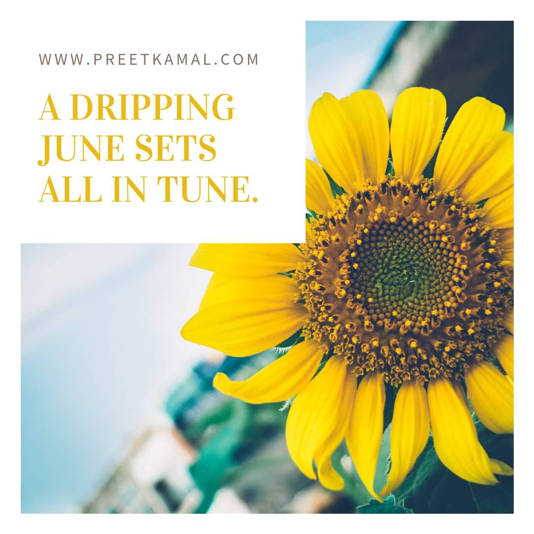 A Drilling June Sets Short Nature Quotes