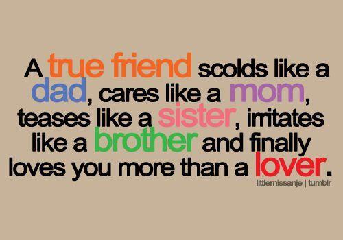 A True Friend Scolds True Friendship Quotes