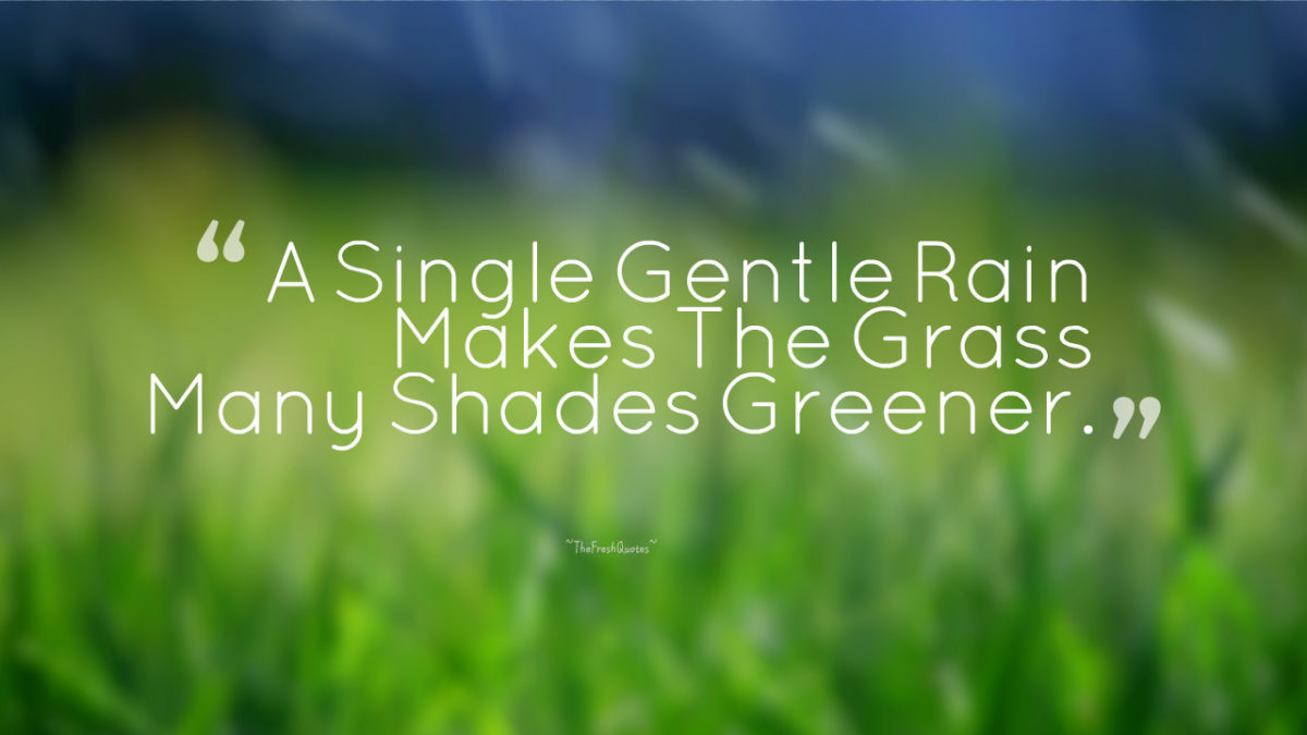 A single gentle rain makes the Nature and Earth Quotes