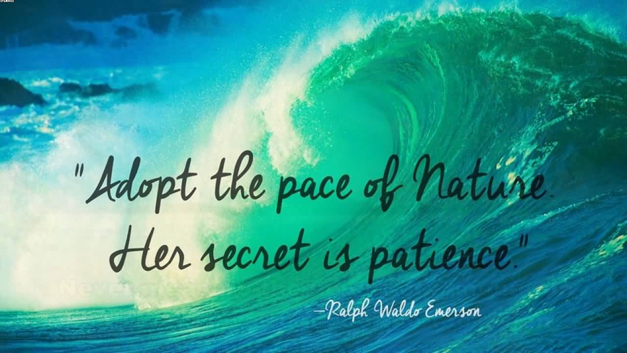 Adopt the pace of Nature and Earth Quotes