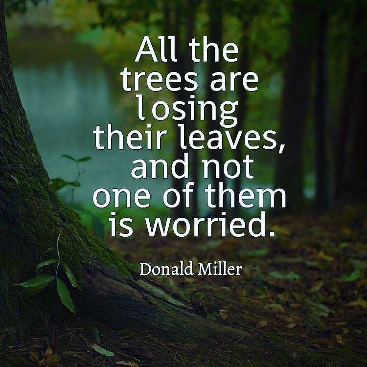 All the trees are losing their Nature and Earth Quotes