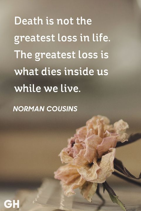 Death Is Not The Best Quotes