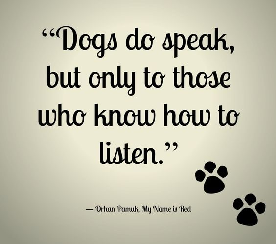 Dogs Do Speak But Amazing Quotes