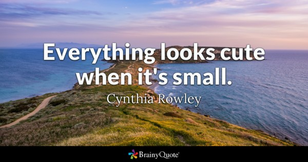 Everything Looks Cute When Cute Quotes