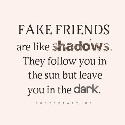 Fake Friends Are Like True Friendship Quotes