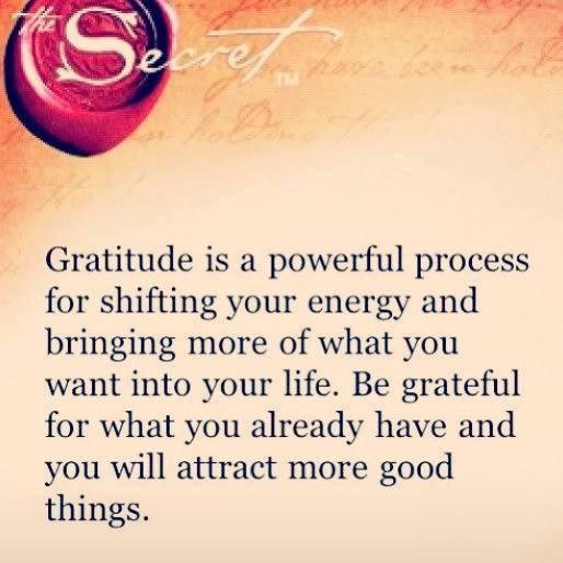 Gratitude Is A Powerful Process Appreciation Quotes