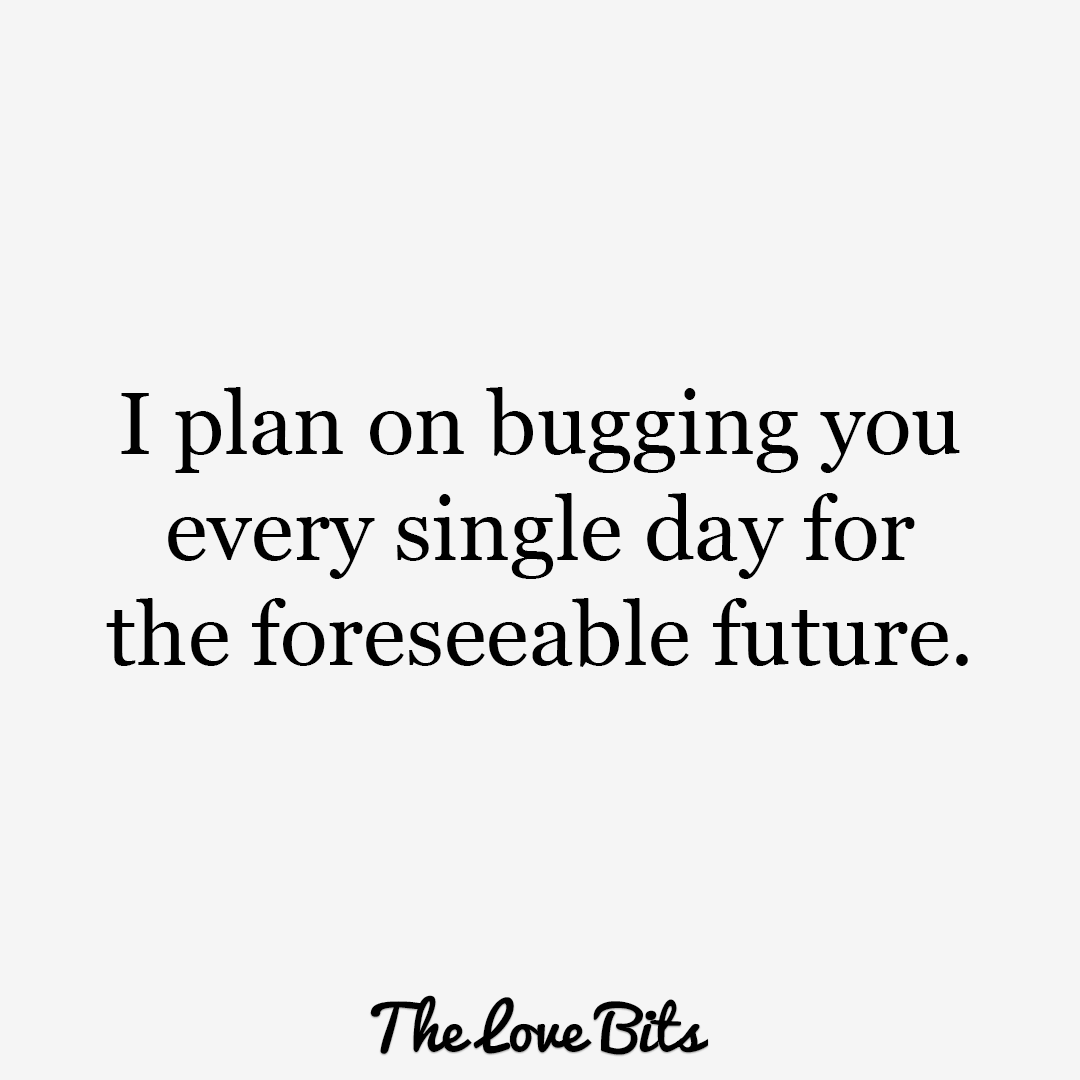I Plan On Bugging You Cute Quotes