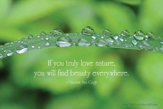 If you truly love Nature and Earth Quotes