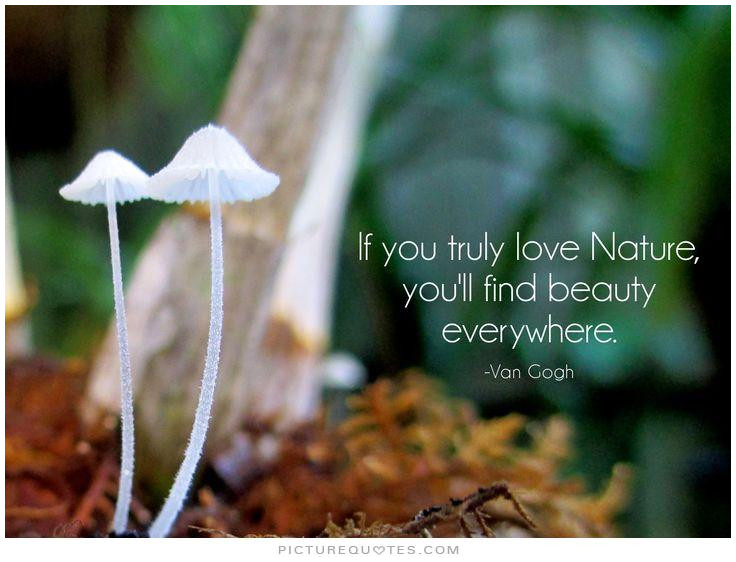 If you truly love nature you'll find Nature and Earth Quotes