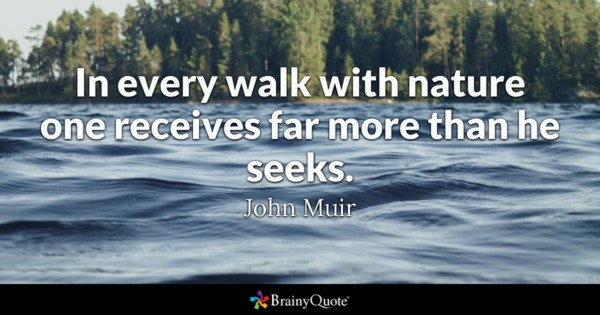 In Every Walk With Inspirational Nature Quotes and Sayings