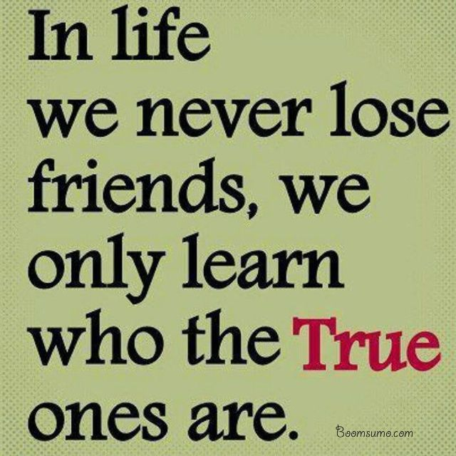 In Life We Never True Friendship Quotes
