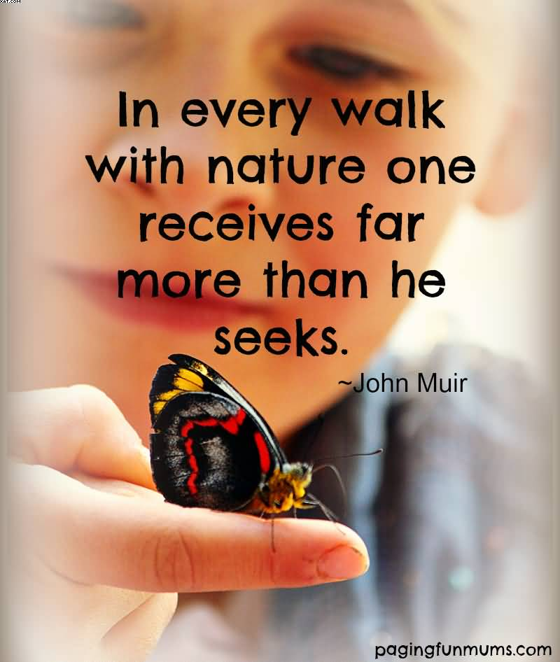 In every walk with Nature and Earth Quotes