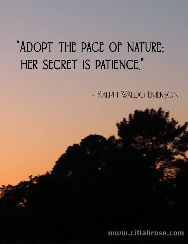 Inspirational Nature Quotes and Sayings Adopt The Pace Of