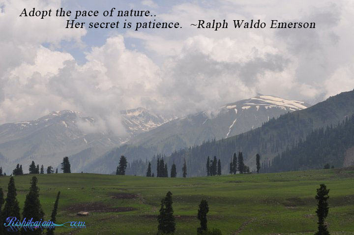 Inspirational Nature Quotes and Sayings Her Secret Is Patience