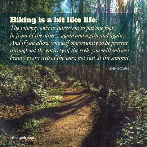 Inspirational Nature Quotes and Sayings Hiking Is A Bit