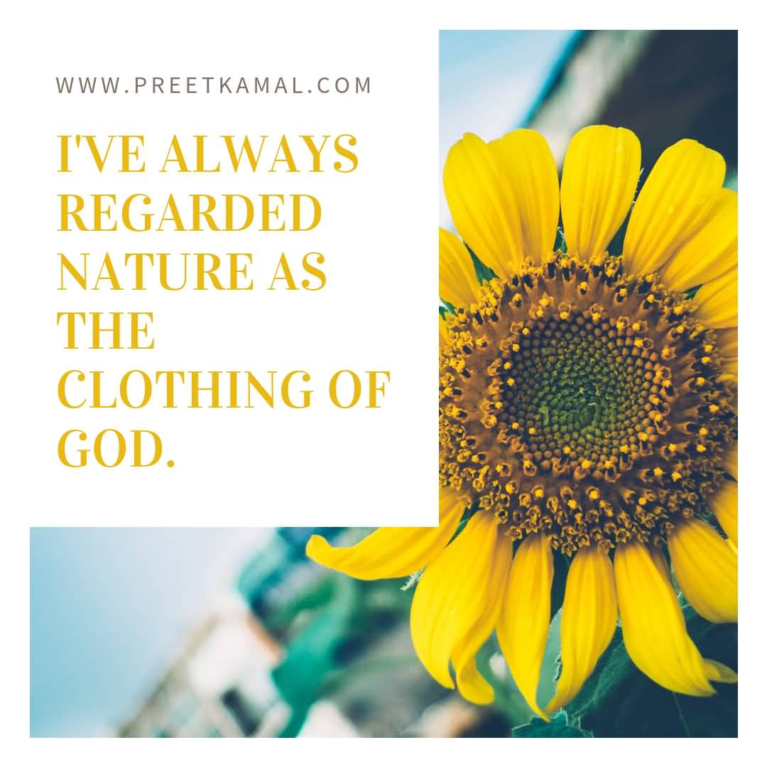 I've Always Regarded Nature Short Nature Quotes