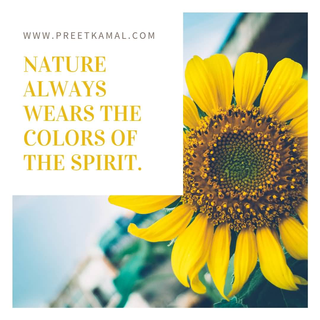 Nature Always Wears The Short Nature Quotes