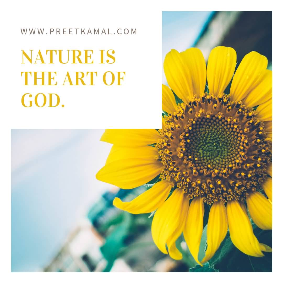 Nature Is The Art Short Nature Quotes