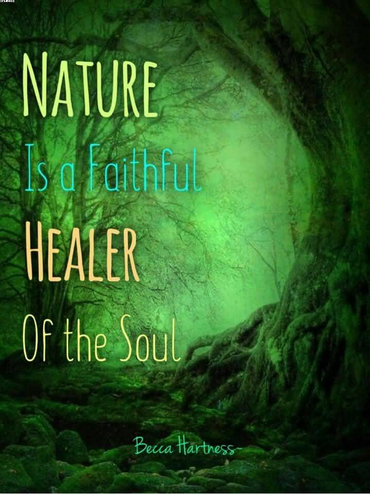 Nature is a faithful healer Nature and Earth Quotes