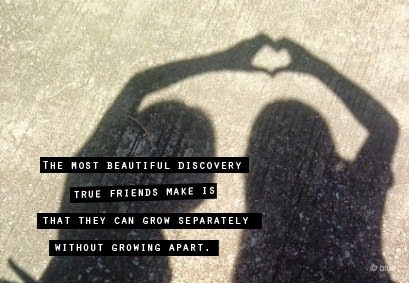 The Most Beautiful Discovery True Friendship Quotes