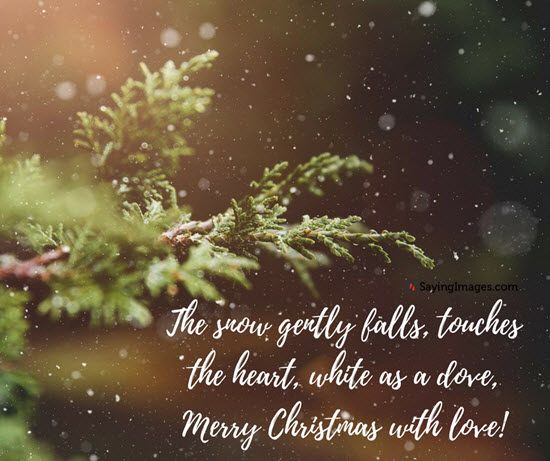 The Snow Gently Falls Christmas Quotes