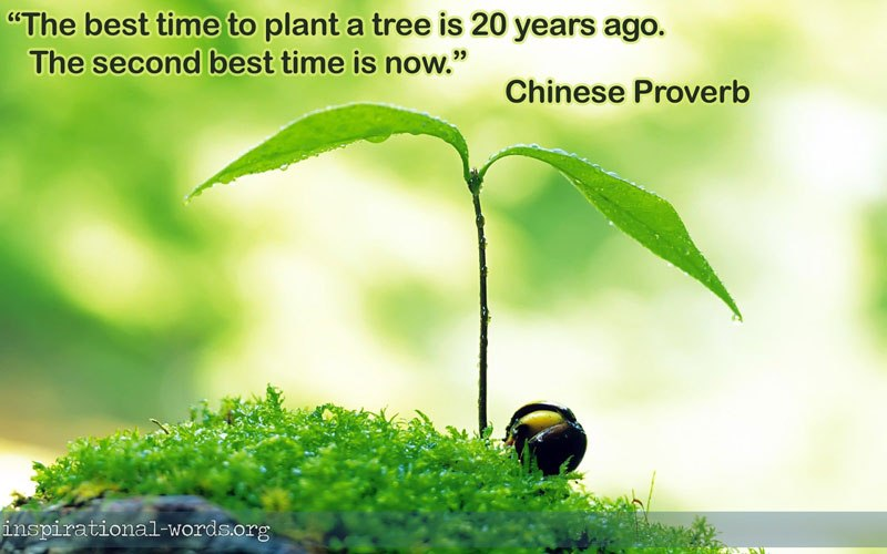 The best time to plants a tree is Nature and Earth Quotes