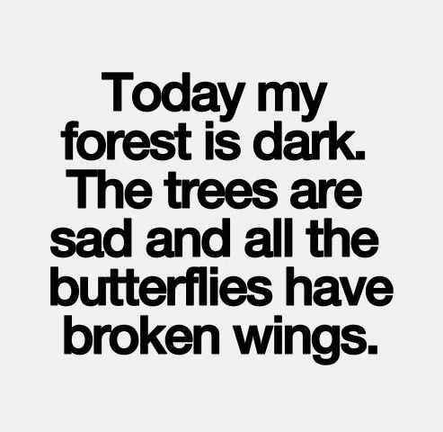 Today My Forest Is Dark Broken Hearted Quotes