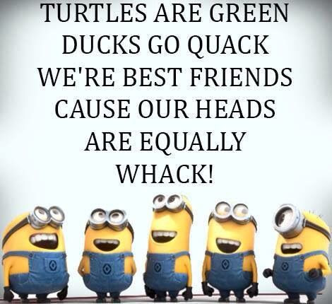 Turtles Are Green Ducks Funny Best Friend Quotes