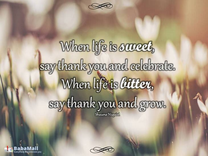 When Life Is Sweet Beautiful Quotes