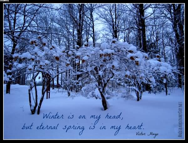 Winter is on my head but Nature and Earth Quotes