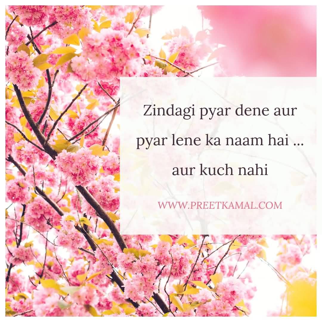 Zindagi Pyar Dene Aur Pyar Lene Ka Naam Hai... Aur Kuch Nahi