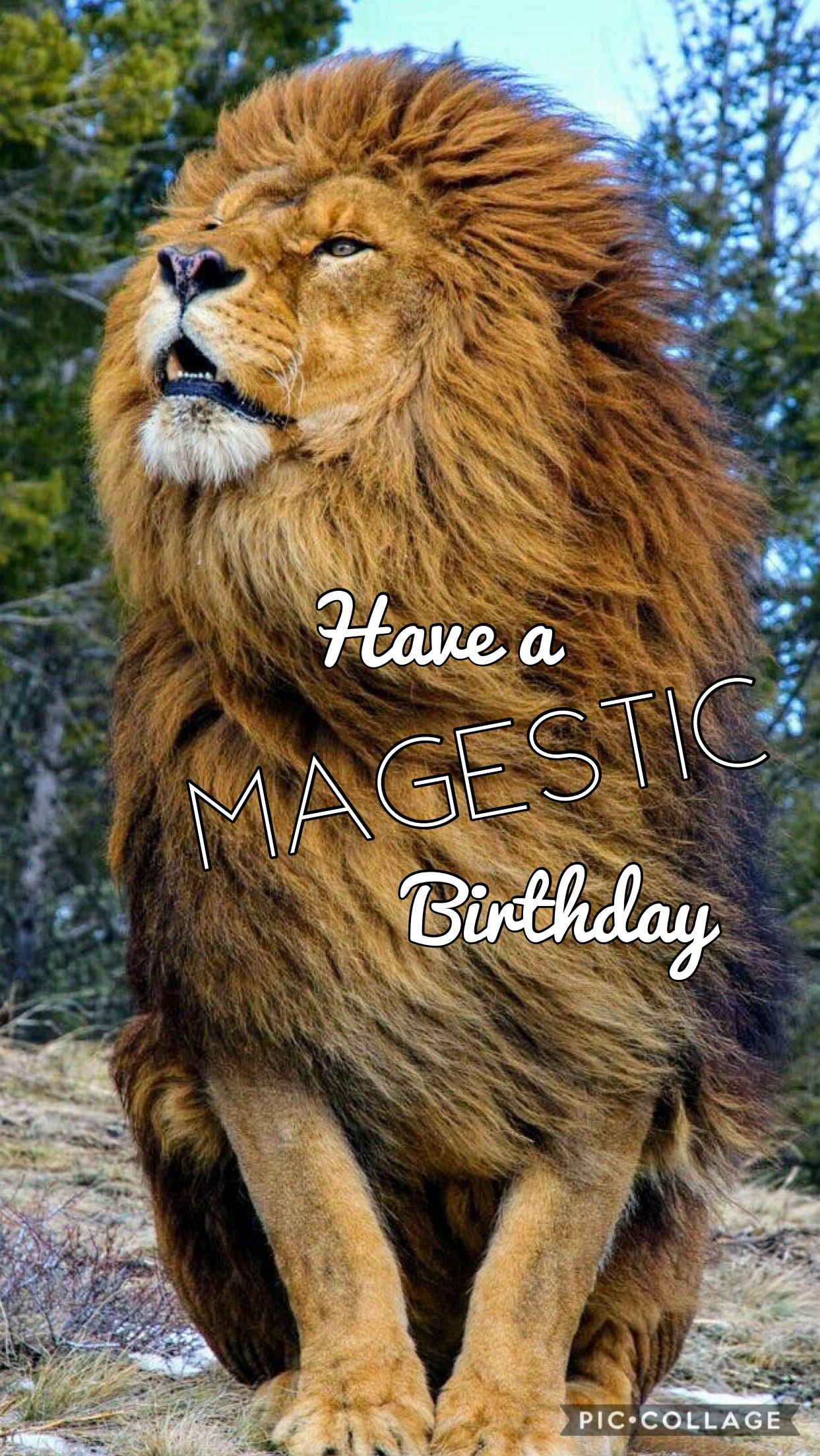 Have a magestic birthday wish for Godparents