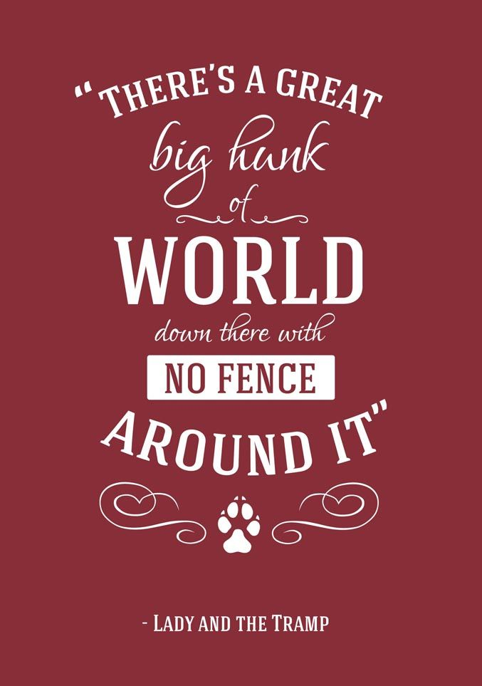 There's A Great Big Disney Quotes