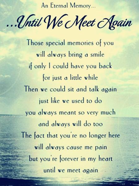 Until We Meet Again Death Quotes
