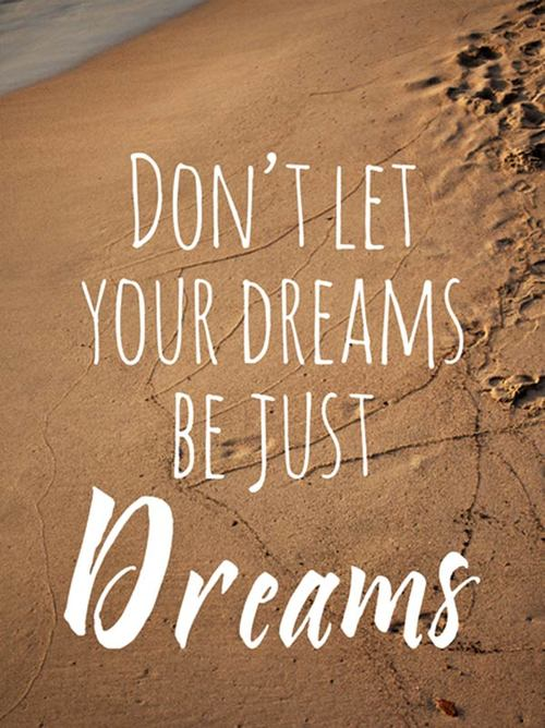 Don't Let Your Dreams Dream Quotes
