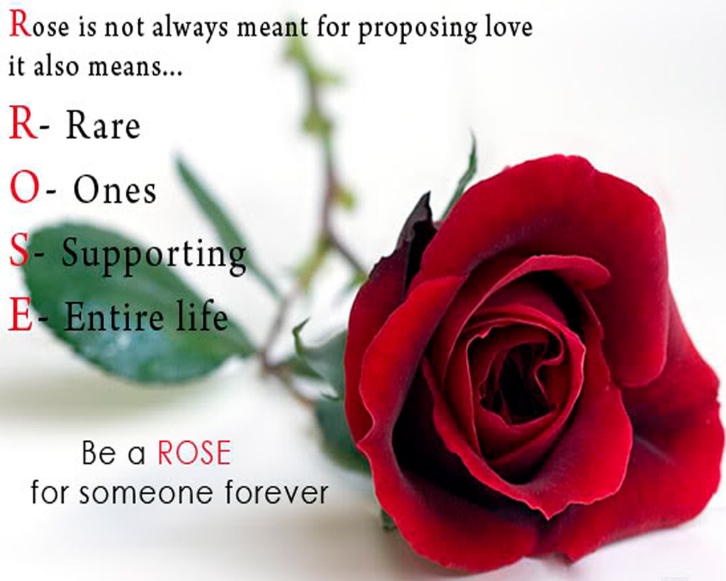 Happy Rose day amazing proposing with rose quote for special one
