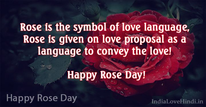 Happy Rose day amazing quote for dear love on this special day