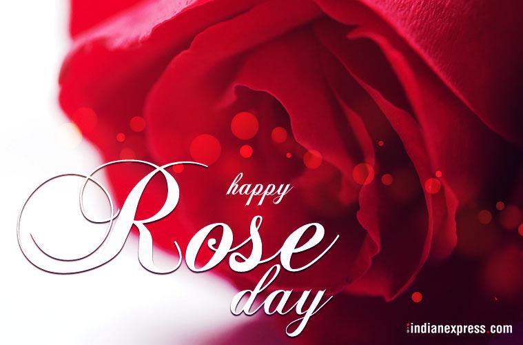 Happy Rose day best wallpaper image for dear girlfriend