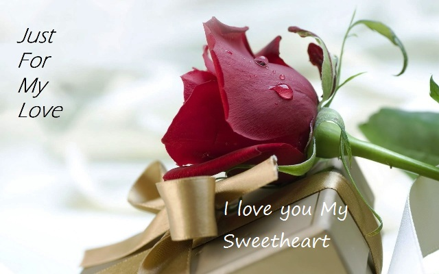 Happy Rose day cute greetings for you my lovely sweetheart
