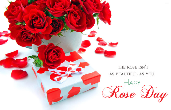 Happy Rose day fabulous red roses with gift and wish for you dear love