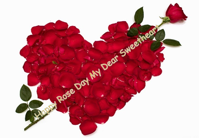 Happy Rose day fantastic heart roses my dear sweetheart from your lover