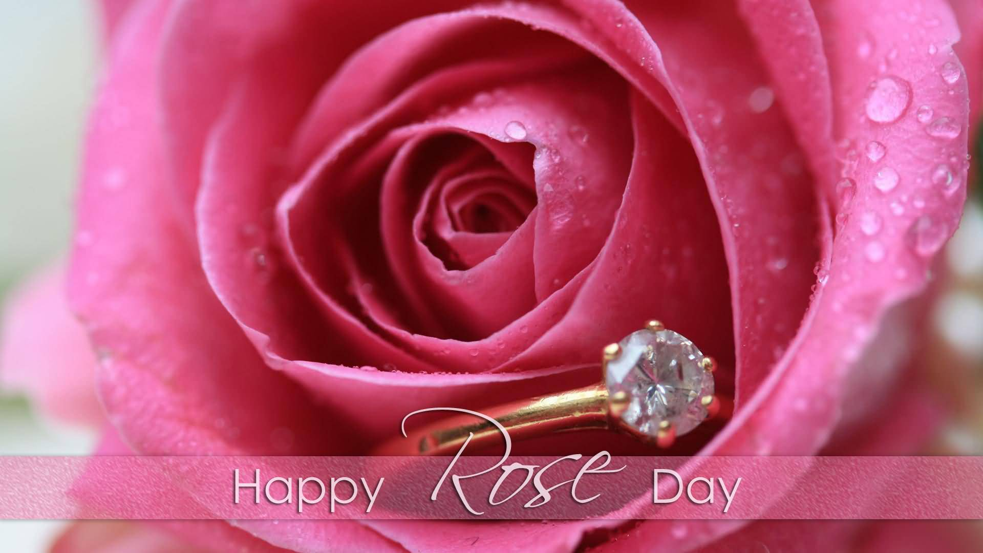 Happy Rose day hd image with ring roses wallpaper for beautiful love