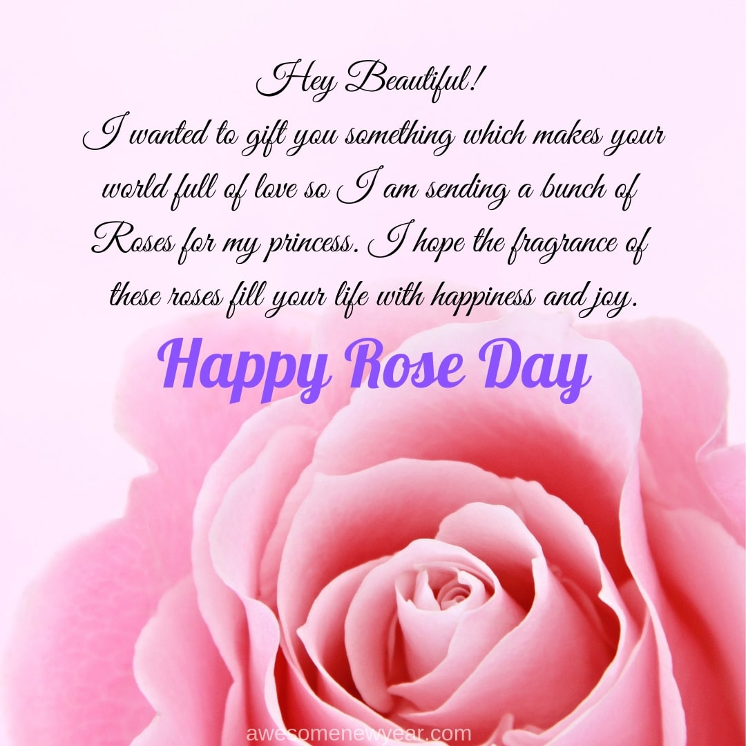 Happy Rose day hey beautiful image for your friends and special one with best wishes
