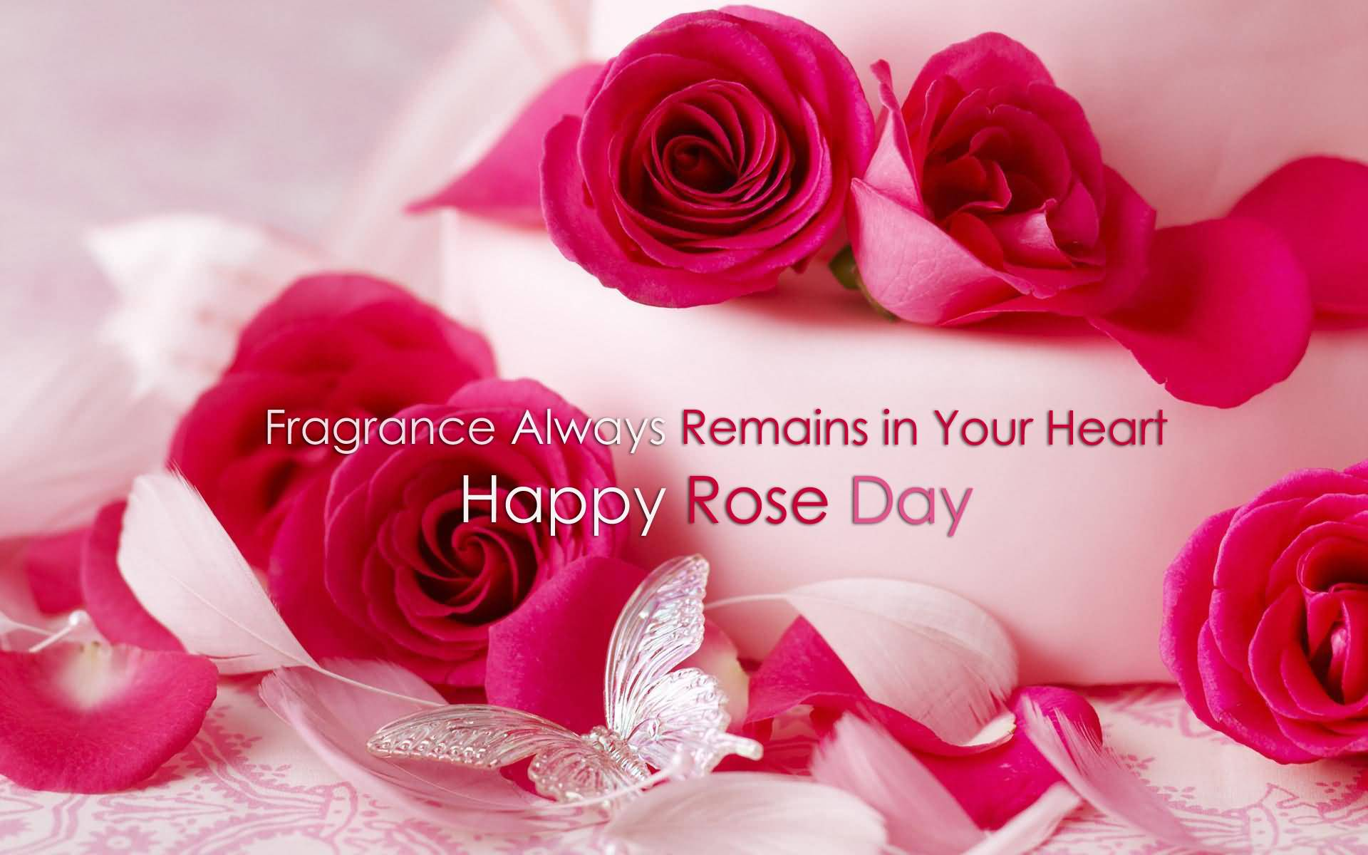 Happy Rose day lovely pink roses with fragrance for your love