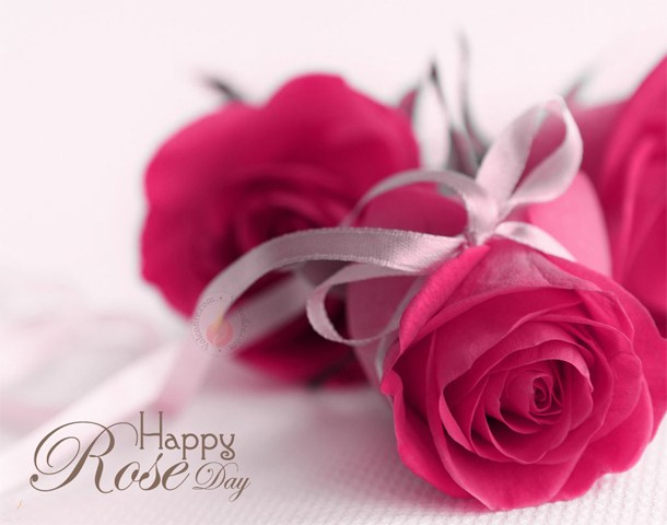 Happy Rose day simple wish image for simple and beautiful girlfriend